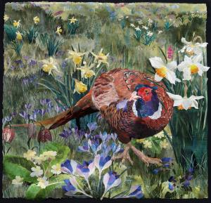 Pheasant in Spring Meadow
